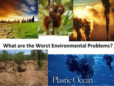 Global Environmental Issues | Grade 5,6,7,8,9, 10,11,12, | Next Generation Science aligned