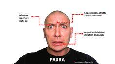 Muscoli rivelatori nell'espressione dell'emozione di paura. Guarda altro qui: http://www.stefanoferruggiara.com/training-on-line-emozioni-ed-espressioni/