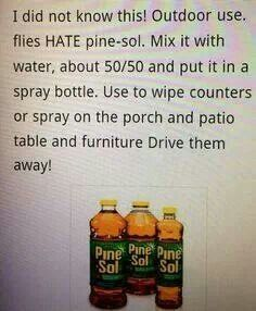 Flies hate Pine Sol just in case your running away from zombies in mid apocalypse . or just if you are camping and the blood suckers are driving you nuts Diy Cleaning Products, Cleaning Solutions, Cleaning Hacks, Cleaning Supplies, Pest Solutions, Weekly Cleaning, 1000 Lifehacks, Grand Menage, Guter Rat