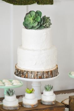 Succulent cake at a Bee Baptized | Bee themed baptism birthday party by Kara Allen | Kara's Party Ideas | KarasPartyIdeas.com Baby shower ideas, too!-108
