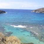 Hanauma Bay Nature Preserve. The snorkeling is spectacular: live coral, many brilliant tropical fish and sea turtles to be experienced up close.  This venue is perfect for amateur and experienced snorkelers.