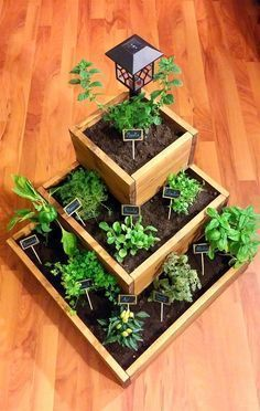 12 Majestic Small Backyard Garden Apartment Therap – Container Gardening Diy – garden shed ideas diy Big Backyard, Small Backyard Gardens, Indoor Garden, Outdoor Gardens, Eco Garden, Balcony Gardening, Garden Beds, Backyard Ideas, Dish Garden