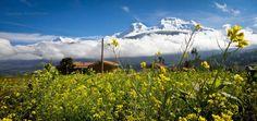 Nevado Huascarán -- Yungay, Ancash - Perú   (foto:Ronald Pachas Tamara)