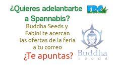 Te voy a contar como obtener un 5% de descuento en semillas de Buddha Seeds hasta el 23 de Marzo de 2015 ¿Quieres saberlo? ¡Entra y hazte con la oferta!