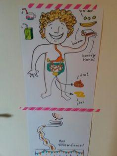 Illustration pottytraining | zindelijkheidstraining http://www.lindavanbruggen.nl