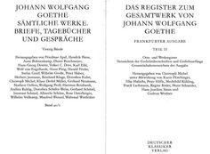 Das Register zum Gesamtwerk von Johann Wolfgang Goethe / herausgegeben von Christoph Michel unter Mitwirkung von Karin Flörchinger ... [et al.] - Frankfurter Ausgabe, 2013 - 2 Vols.