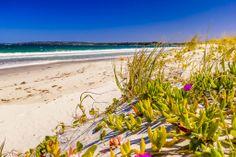 Take a walk down beautiful Callala Beach all the way to Currambene Creek.