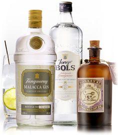 old English gin - Google Search