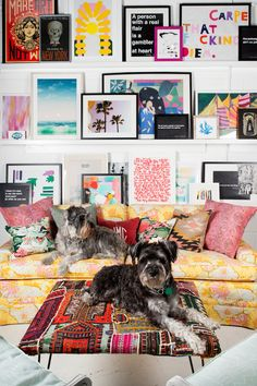 photo shelf inspo via jamie meares of furbish &  i suwannee