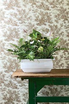 pflanzgefäß innen weiße anthurie blechnum farn louisianamoos