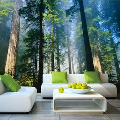 7.55US $ 49% OFF|5D Papel Murals Forests Wallpaper Nature Fog Trees 3d Wall Photo Mural forest Wall paper for Background Bedroom 3D Wall Murals|Wallpapers|   - AliExpress