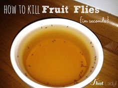 Fruit flies may be the most annoying creatures in the world!  I tried everything, but this was the only thing that worked. See how many I caught in 5 minutes!? #DIY #bugs #home
