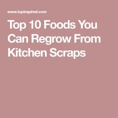 Top 10 Foods You Can Regrow From Kitchen Scraps