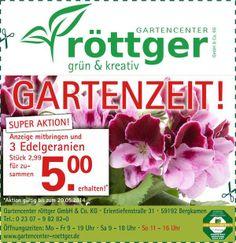 #Angebot #Sparen #Edelgeranien #Gartenzeit