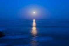 Moon Shine by Joseph S Giacalone