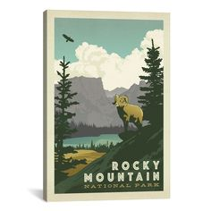iCanvas Anderson Design Group Asa National Park Rocky Mountain National Park Canvas Print Wall Art
