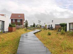 Berghem (NB), looppad door wadi's in nieuwbouwwijk de Piekenhof Landscape Architecture, Landscape Design, Architecture Design, Garden Design, Farm Landscaping, Natures Path, Ecology Design, Green Street, Rain Garden