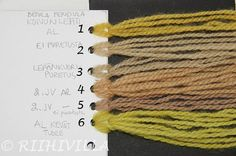 Yarn dyed with birch leaves by Riihivilla Dyeing Fabric, How To Dye Fabric, Natural Dyeing, Knitting Yarn, Dyes, Knit Dress, Fiber Art, Spinning, Birch