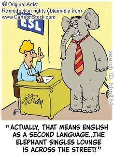 """Actually, that means English as a Second Language... The Elephant Singles Lounge is across the street!"""