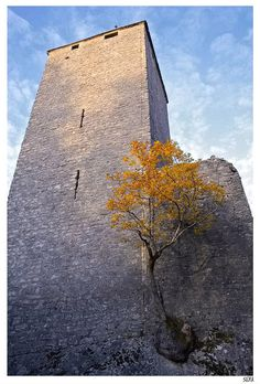 Perseverance - Estavayer-le-Lac, Fribourg