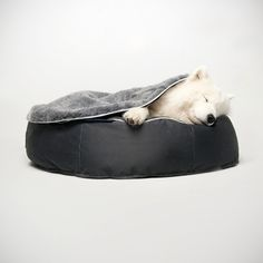 Bean Bag Dog Bed Large £159