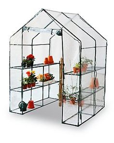 Propagate & Protect Your Plants With A Greenhouse