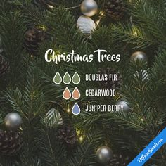 Christmas Trees — Essential Oil Diffuser Blend