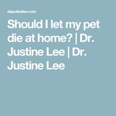 Should I let my pet die at home?   Dr. Justine Lee   Dr. Justine Lee