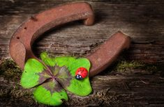 Photo about Horseshoe and clover on wood. Image of rusty, wish, retro - 47627916 Wiccan, Magick, Pagan, Haunted Objects, Frame Shelf, Magic Spells, Good Luck, Evo, Stock Photos