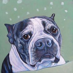"""Otis the Boston Terrier Dog Custom Pet Portrait Painting in Acrylic on 12"""" x 12"""" Canvas from Pet Portraits by Bethany."""