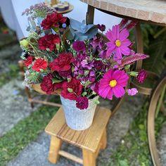Floristas por Caroline Piegel (@asfloristas) • Fotos e vídeos do Instagram Foto E Video, Floral, Plants, Instagram, Design, Florists, Pictures, Flowers