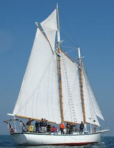 Tip: Experience the romance and mystique of sailing on the Tall Ship, Schooner 'Appledore.' This is an authentic ship that circumnavigated the globe when she was first launched!