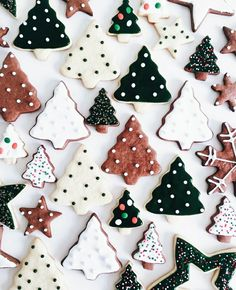 Try our Christmas advent biscuits recipe. Make super simple homemade gingerbread Advent biscuits for Christmas with this easy Christmas cookie recipe. Christmas Tree Cookies, Christmas Mood, Noel Christmas, Merry Little Christmas, Christmas Treats, Christmas Decorations, Christmas Lights, Xmas Cookies, Gingerbread Cookies