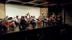 27 November 2016 (17:53) / Strings Orchestra of CAMERATA CANTAREIRA and Special Guests, conducted by MARCELO JAFFÉ; Chamber Music Concert at Auditório Alfredo Mesquita, Pinacoteca do Estado de São Paulo.
