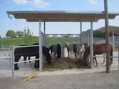 Futterstation für Pferde