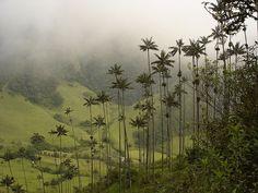 Colômbia lugares para conhecer