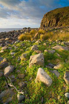 South Bruny National Park, Tasmania by NickMonk