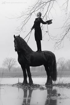 Stunning equine photography by Gosia Makosa
