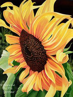 "Dennis Magnusson - "" Yellow Tangle-Sunflower """