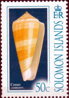 Solomon Island 2006 Cone Shells SG 1205 Fine Mint SG 1205 Scott 1073 Other British Commonwealth Stamps for sale Here