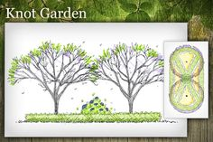 Free Landscape Design Plans | arborday.org - Free Landscape Design Plans Helps you pick trees for your area  arborday website