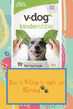 Don't always have time to make homemade vegan dog food? 🤷🏻‍♀️ Have you been looking for the right vegan dog food to feed your dog? 🤷🏽‍♂️ Check out our review and see if it's right for your canine. 🐾 Vegan Dog Food, Protein Pack, Have Time, Dog Food Recipes, Your Dog, Nutrition, Homemade, Dogs, Check