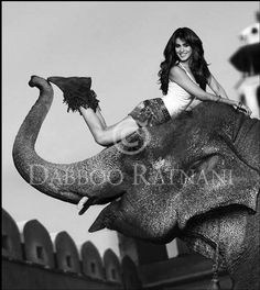 genelia d'souza, photography by daboo ratnani #Bollywood