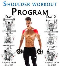 SHOULDER WORKOUT PROGRAM GUIDE ✅ Your Shoulder Muscles Ok, so we can't start to build up the muscles in your shoulders without knowing what muscles make up your shoulders Put simply, the shoulder is made up of two groups of muscles extrinsic mu - # Gym Workout Chart, Gym Workout Tips, Dumbbell Workout, Gym Workouts For Men, Dumbbell Exercises, Workout Diet, Fitness Workouts, Weight Training Workouts, Fitness Tips