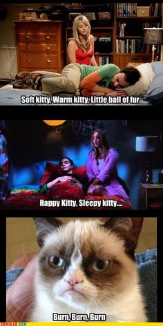 "Grumpy's version of ""Soft Kitty"" from ""The Big Bang Theory"""