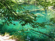 湖と滝と森の絶景!「水の箱庭」クロアチア・プリトビッチェ | TripAdvisor Gallery