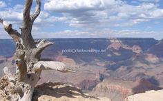 Il Grand Canyon e le Grand Canyon Caverns