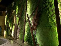 metal sculptural elements added to green wall to create a more sophisticated / layered effect