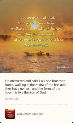 Bible App, Son Of God, It Hurts, Thoughts, Sayings, Words, Lyrics, Horse, Quotations