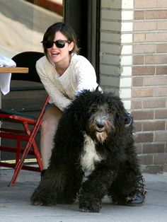 Rachel Bilson with a very big dog!